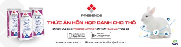 [VietDVM-ADM] Presence 600x160