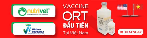 [Nutrivet] 600x160 Vaccine ORT