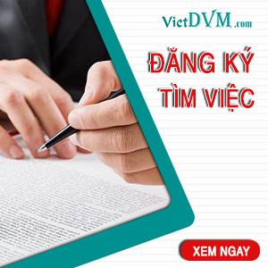 [VietDVM] 300x300 Đăng ký tìm việc 1