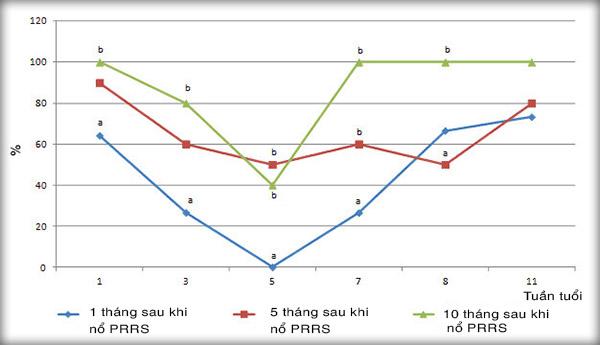 Sơ đồ huyết thanh của PCV2