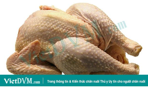 Việt Nam có cơ hội xuất khẩu thịt gà sang EU