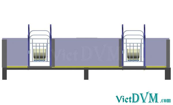 Mô hình 3d chuồng sàn cho heo nái đẻ kiểu có vách ngăn - bước 11