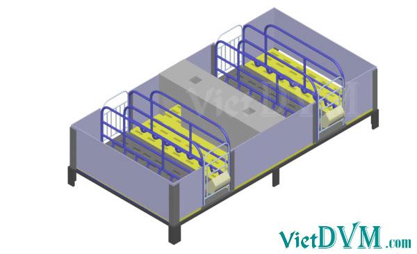 Mô hình 3d chuồng sàn cho heo nái đẻ kiểu có vách ngăn - bước 12