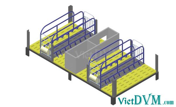 Mô hình 3d chuồng sàn cho heo nái đẻ kiểu có vách ngăn - bước 5